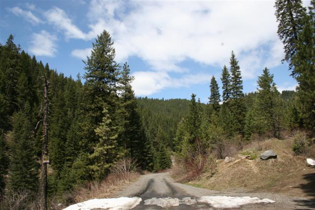 ForForest Service road access to the Hot Springsest Service road access to the property