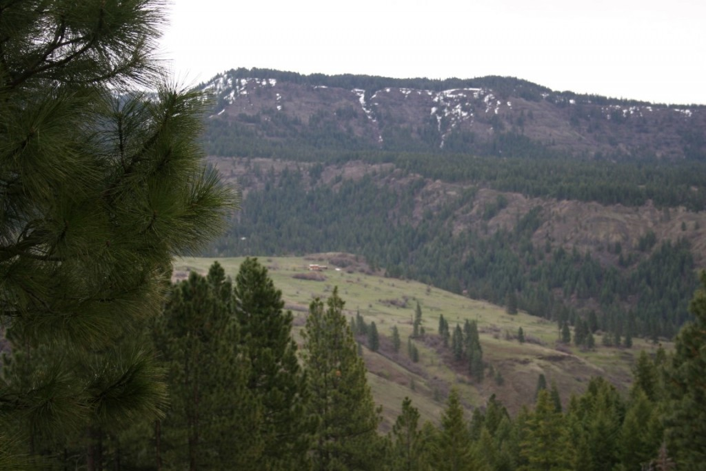view 6 on hunting ranch