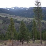 view on hunting ranch